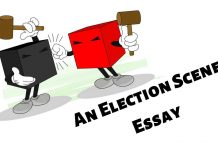 An Election Scene Essay